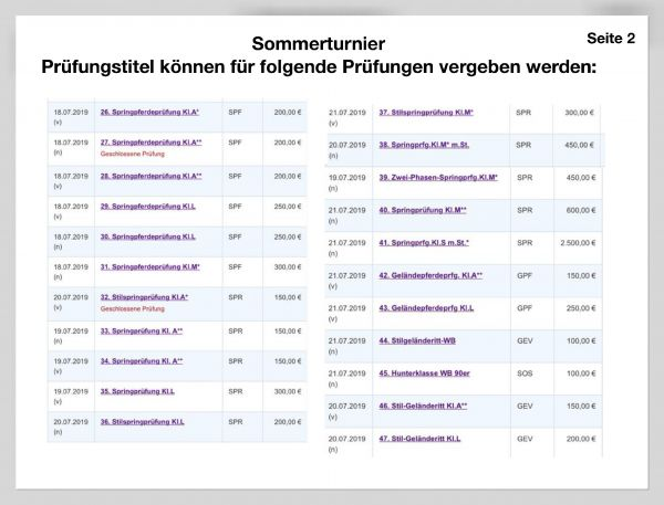 ruf-sponosoren-praesentation-17-234747A9A-FF5D-A818-CB83-AD3073D2D16F.jpg